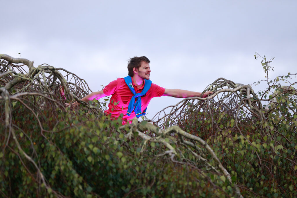 An actor in bright pink pops their head out the top of a tree during Twelfth Night in 2020.